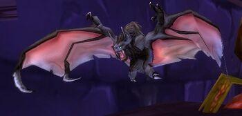 Plagued Bat