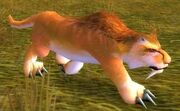 Flatland Cougar