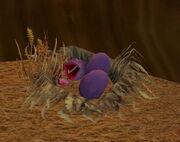 Takk's Nest