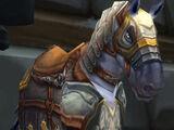 Argent Warhorse (NPC)