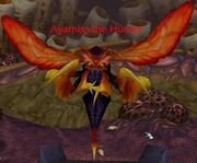 Ayamiss the Hunter