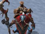 Witch Doctor (Warcraft III)