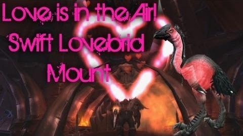 Syiler's WoW Mount Guides Swift Lovebird - Love is In the Air Overview