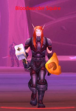 Bloodwarder Squire