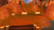 Camp Everstill (Cataclysm)