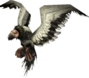Arctic condor