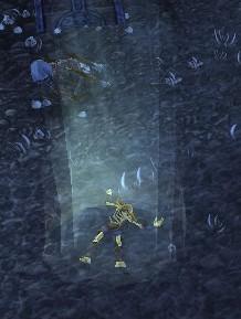 Thalorien Dawnseeker's Remains