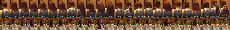 Human Female Hairstyles