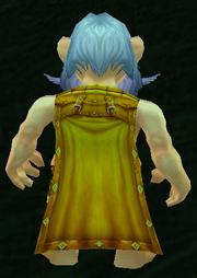Insignia Cloak, Grass Background, Gnome Male