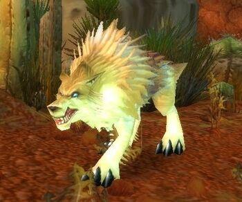 Rabid Crag Coyote