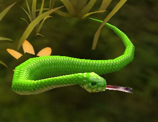 Image of Emerald Boa
