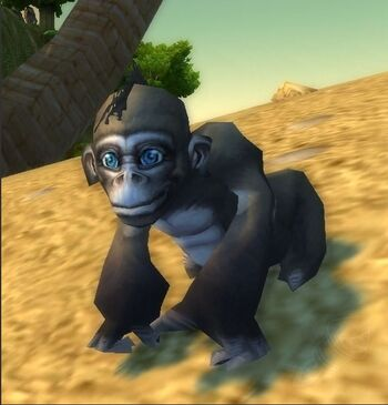 Image of Baby Ape