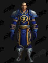 797200-stormwind-guard-mail-leather