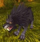 Blackrock Battle Worg