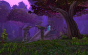 Twilight Grove