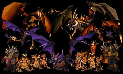 Blackdragonflight