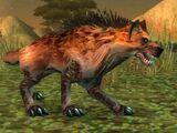 Kolkar Packhound