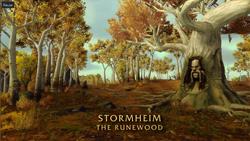 BlizzCon Legion - Stormheim The Runewood2