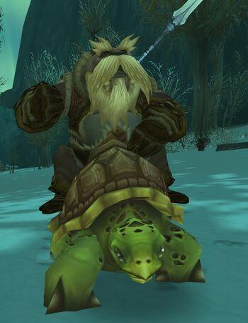 Moa'ki Turtle Rider