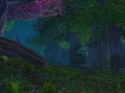 Nightsong Woods