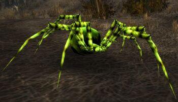 Darkmist Spider