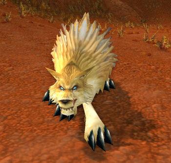 Feral Crag Coyote