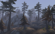 Highmountain2