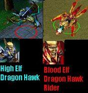 BloodHighElfDragonHawk