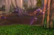 Druids of the Claw - War of the Thorns - Battle for Azeroth