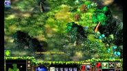 Warcraft III Reign of Chaos The Druids Arise