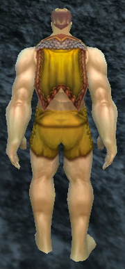 Burnished Cloak, Stone Background, Human Male