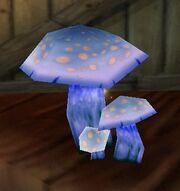 Infused Mushroom