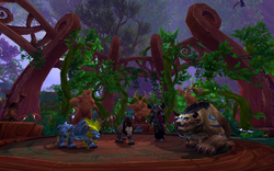 Druid Order Hall