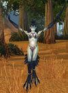 Witchwing Ambusher