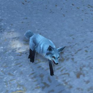 Arctic Foxling