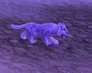 Winterspring cub 2