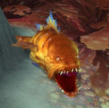 Snapjaw Grouper