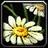 Inv misc flower 02