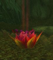 Cleansed Windblossom