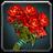Inv rosebouquet01