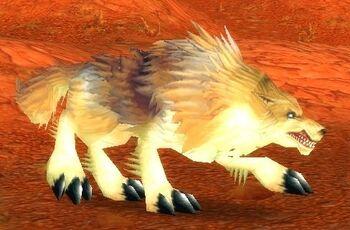 Elder Crag Coyote