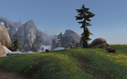 Highmountain3