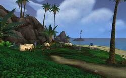Alliance Beachead 02
