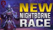 Nightborne - Customization, Heritage Armor, Racials, Voices & Race Mount - Horde Allied Race