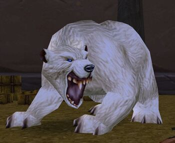 Stabled Bear