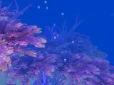 Seabrush