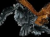 Flight Form