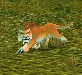 Mountain Cougar