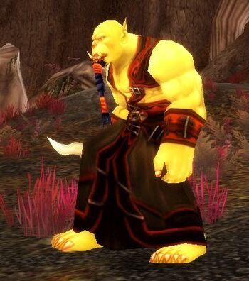 Jaedenar Cultist