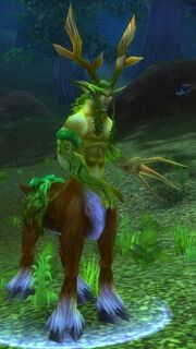 Keeper of the Grove in WoW